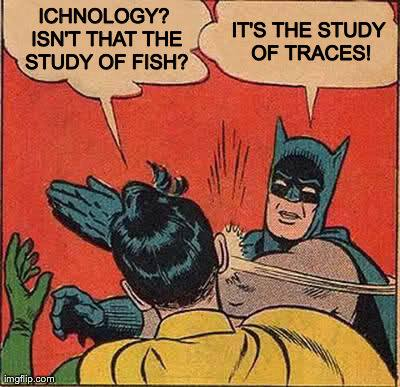 Ichthyonology